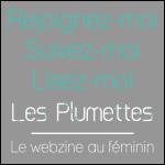 les-plumettes-widget-blog-gris